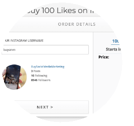 enter order details for Instagram Likes package
